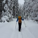 5 Top Tips for Safe Hiking in Winter Wonderlands