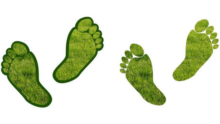 family carbon footprint