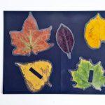 Vonzó őszi dekor: mágneses faleveles dekoráció