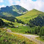 Az ezerarcú Svájc – a havas gleccserektől a mediterrán pálmafákig