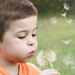 15 Behaviour Strategies for Children on the Autism Spectrum