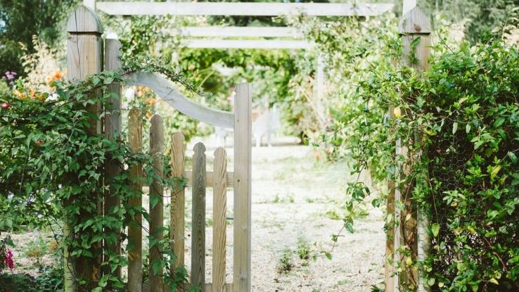 creative gardening tricks