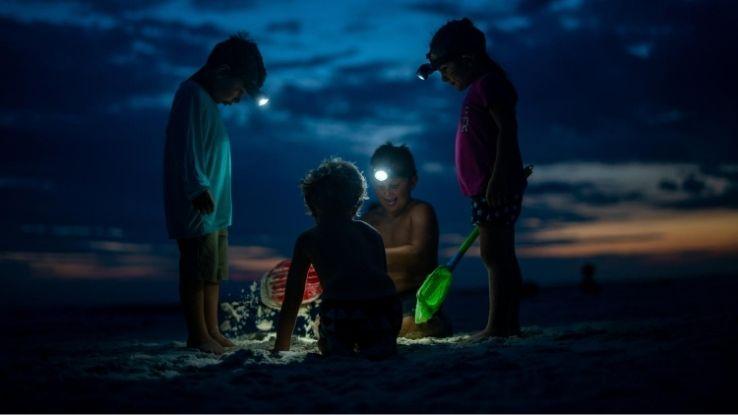high adventure activities with kids