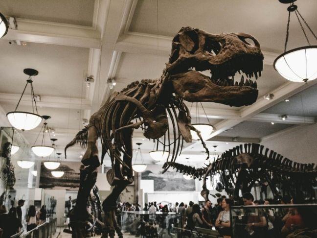 best museum sleepovers in the US
