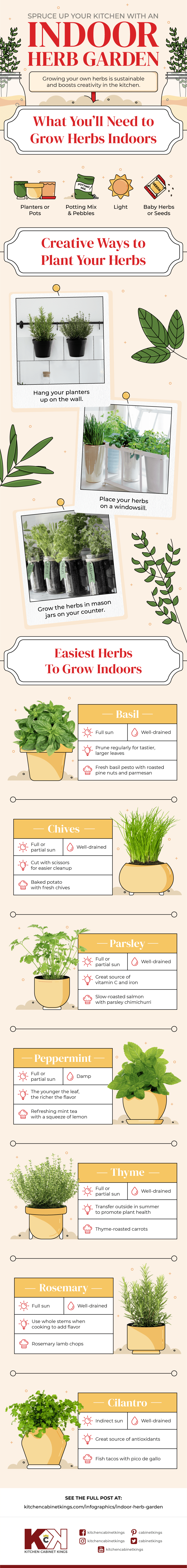 best herbs to grow in the kitchen