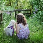 Pros and Cons of Getting a Pet for Your Family