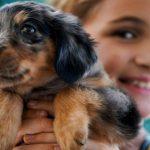 Saving on Pet Expenses