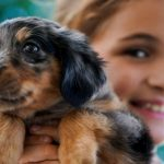 5 Things to Know Before Getting Your Kids a Pet
