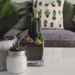 5 Easy Tips to Create a More Relaxing Home Environment