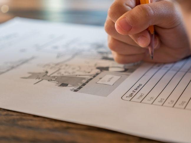 improve test scores