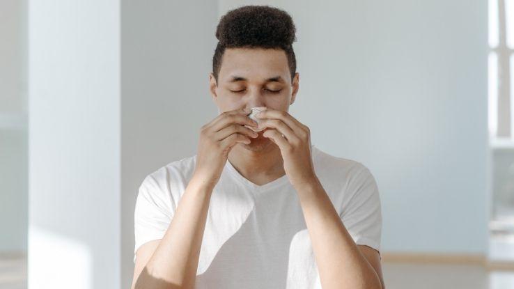 allergy-conscious home shopping