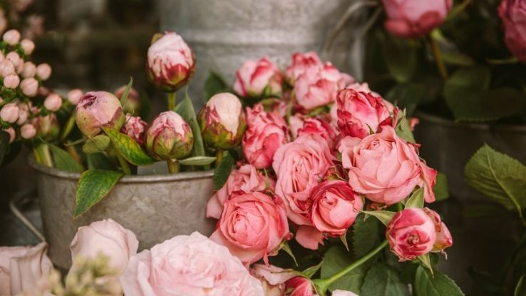 the best flowers for an event